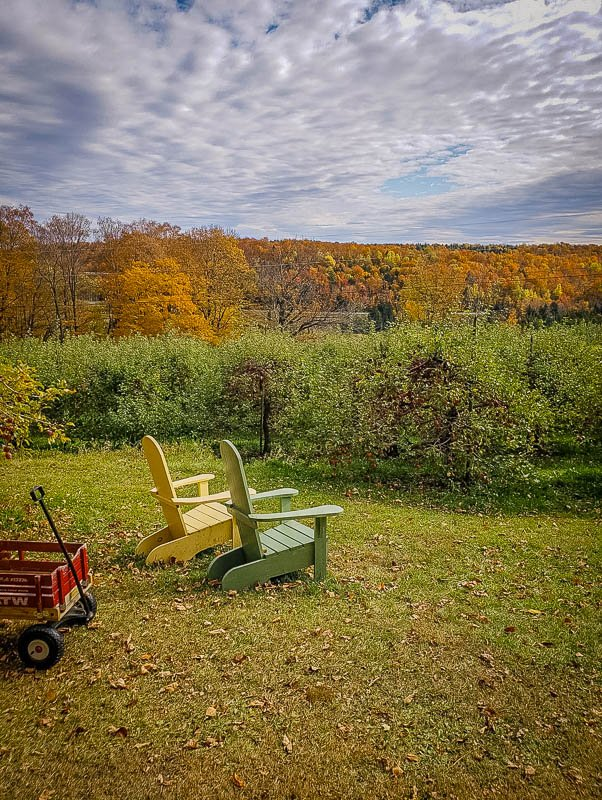 An off-the-beaten-path apple orchard in VT with breathtaking views