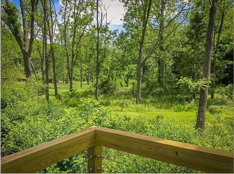 Deck with breathtaking views of the forest