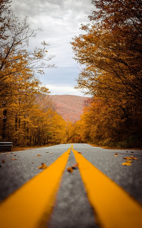 Foliage road trips are one of the best Vermont fall activities.