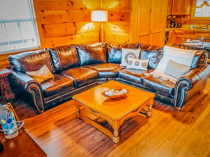 Living room with comfy furniture