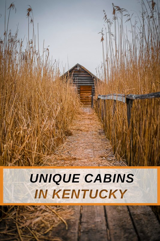 Unique cabins for rent in KY for road trippers and nature lovers alike
