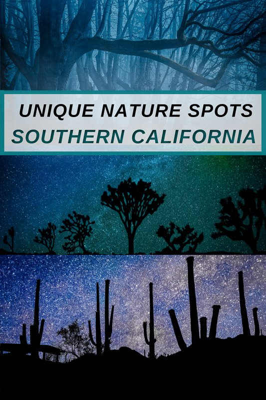 Coolest and most unique nature spots in Southern California for group getaways and other types of vacations